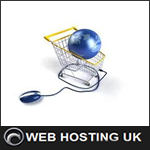 The Importance Of Web Hosting For Protecting Your eCommerce Venture